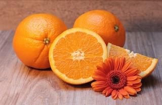 Kann ich meinem Hund Orangen geben?