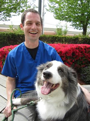 Tierarzt Kann Ich meinem Hund