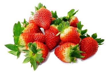 Kann ich meinem Hund Erdbeeren geben?