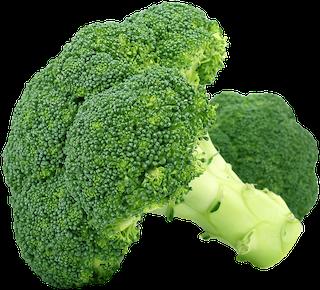 Kann ich meinem Hund Brokkoli geben?
